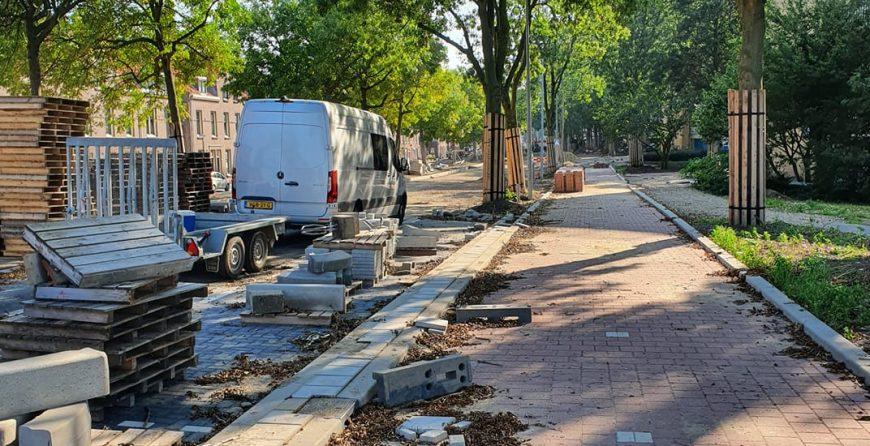 Graafwerkzaamheden Schiedam voor Pendula Boomzorg