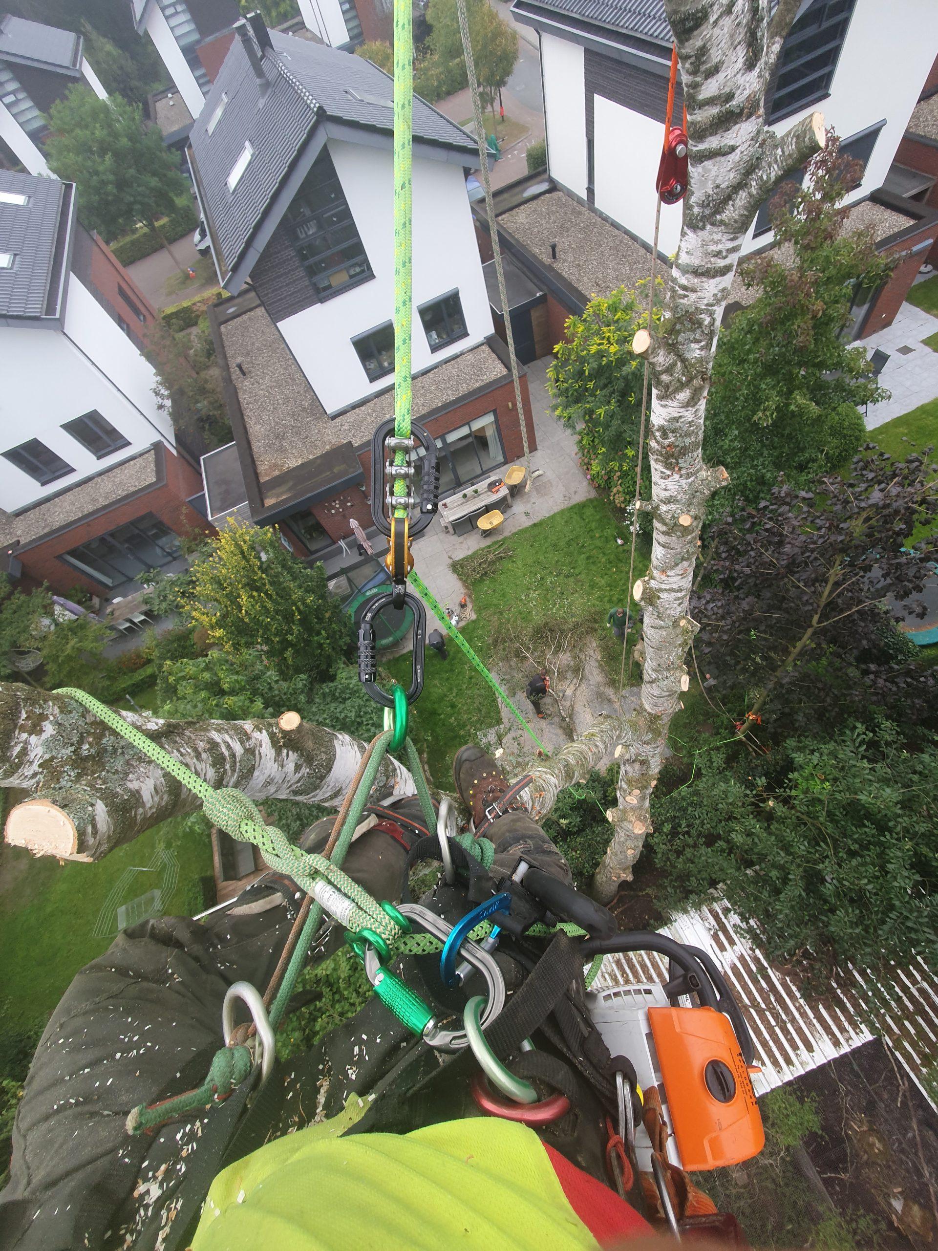 Dekker boomverzorging offerte aanvragen